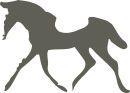 bolshoi benefit horse show